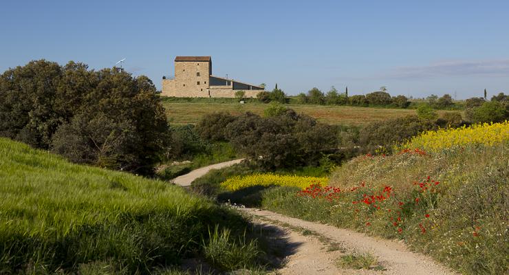 Primavera a la Torre del Codina